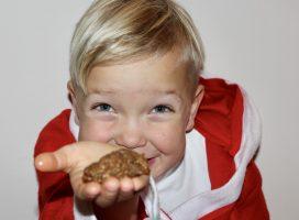 Barnas jul – Online kokkekurs for barn (opptak fra 19.11)