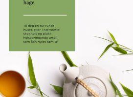 Te av helsefremmende urter fra natur og hage, nedlastbart hefte