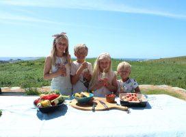 Sommermat for barnefamilier – onlinekurs!